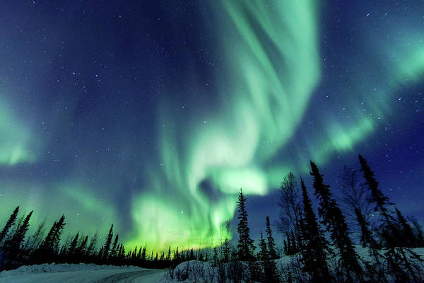 Yellowknife Wall Art - Photograph - Northern Lights Close To Yellowknife In by Vincent Demers Photography