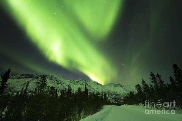 Photograph - Northern Lights Over Annie Lake Road by Philip Hart
