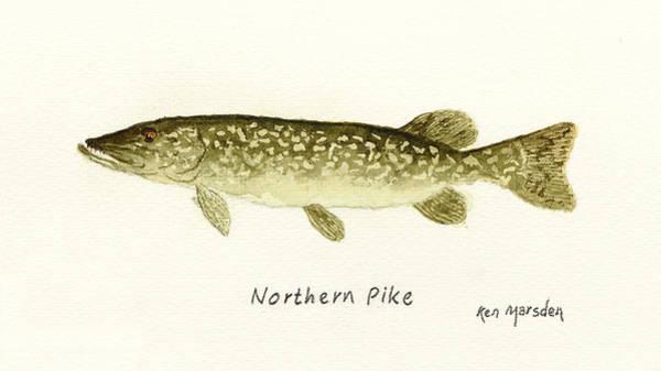 Northern Pike Art Print
