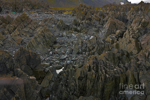 Photograph - Northern Rocky Coastline by Heiko Koehrer-Wagner