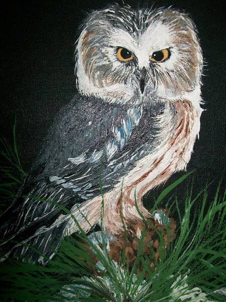 Painting - Northern Saw-whet Owl by Sharon Duguay