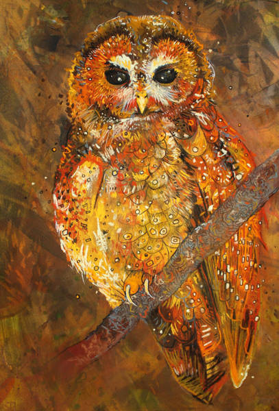 Wall Art - Drawing - Northern Spotted Owl by Sharlena Wood