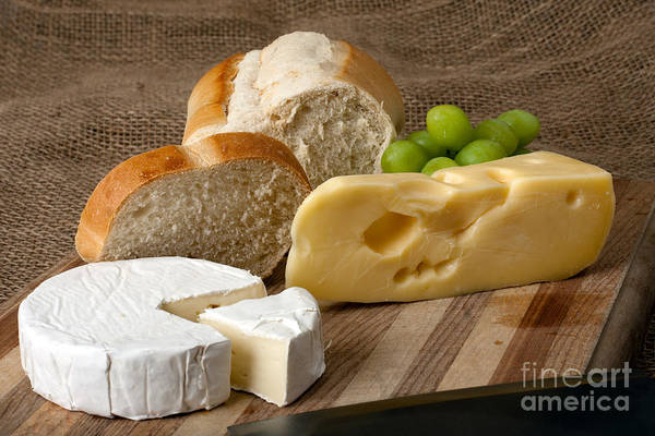 Photograph - Norwegian Jarlsberg And Camembert by Gunter Nezhoda