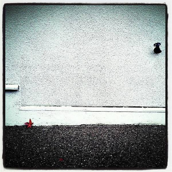 Minimalism Photograph - Not Lonely by CML Brown