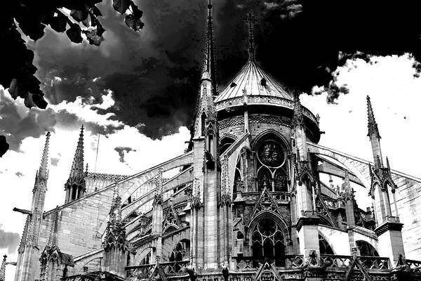 Notre Dam Revealed By Denise Dube Art Print