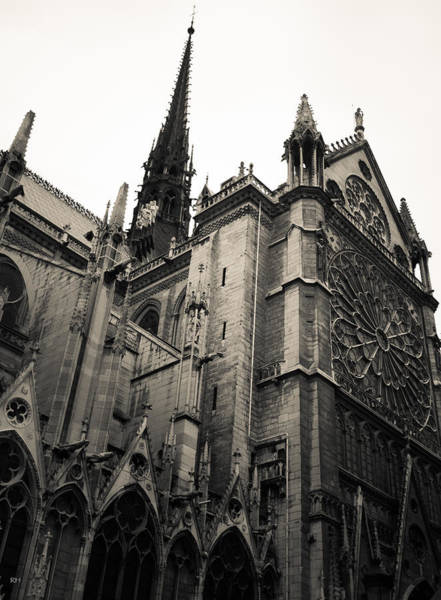 Photograph - Notre Dame - For Eugene Atget by Ross Henton
