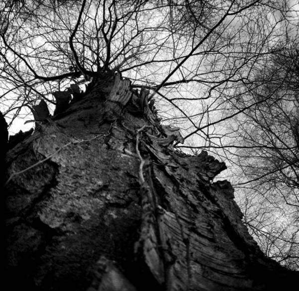 Photograph - Nottingham Gothic by Susan Maxwell Schmidt