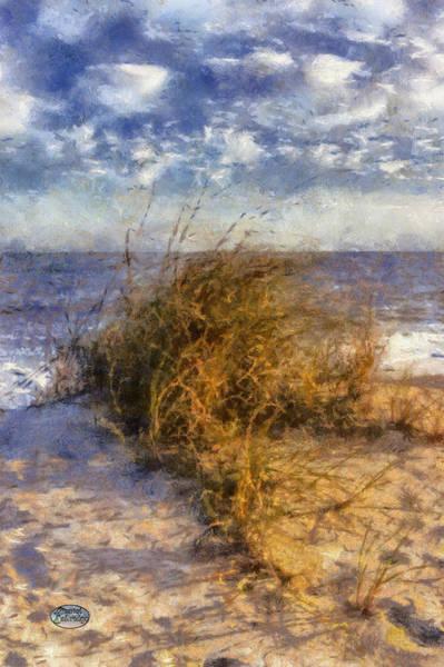 Digital Art - November Dune Grass by Daniel Eskridge