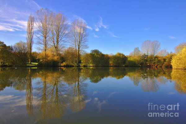 Photograph - November Lake by Jeremy Hayden