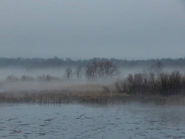 November Mist Art Print