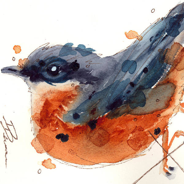 Painting - November Nuthatch by Dawn Derman