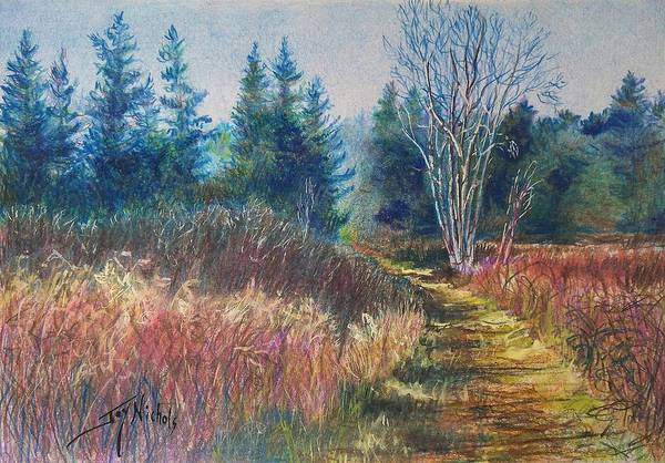 Evergreen Trees Drawing - November's Beauty by Joy Nichols