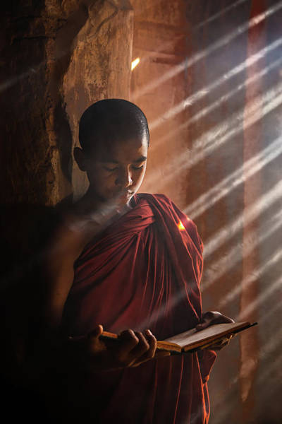 Myanmar Wall Art - Photograph - Novice by Amnon Eichelberg
