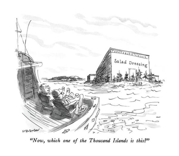 Now, Which One Of The Thousand Islands Is This? Art Print