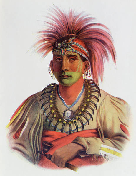 Mohican Photograph - Nowaykesugga, An Otto, Illustration From The Indian Tribes Of North America, Vol.3, By Thomas L by Charles Bird King