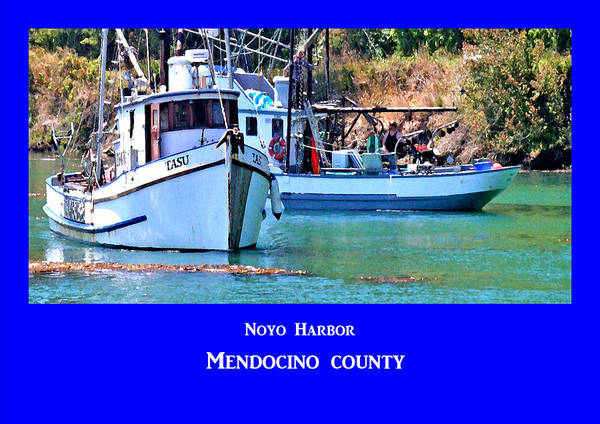 Photograph - Noyo Harbor by Joseph Coulombe