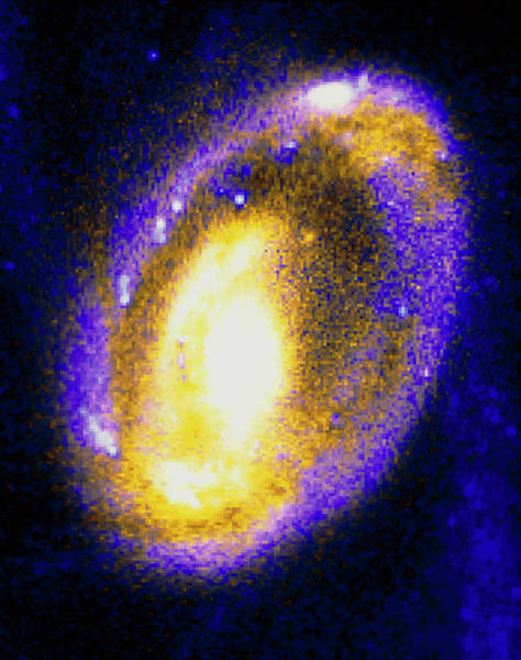 Interacting Galaxies Wall Art - Photograph - Nucleus Of Cartwheel Galaxy With Knots Of Gas by Nasa/esa/stsci/c.struck & P.appleton,iowa State U/ Science Photo Library