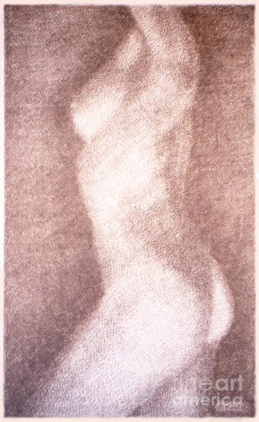 Drawing - Nude Female Torso Drawings 3 by Gordon Punt