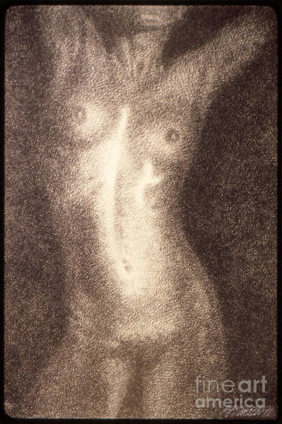 Drawing - Nude Female Torso Drawings 5 by Gordon Punt