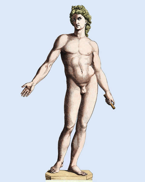 Encyclopedia Wall Art - Photograph - Nude Male Statue by Sheila Terry/science Photo Library