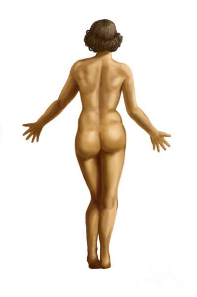 nude-female-torso-girl