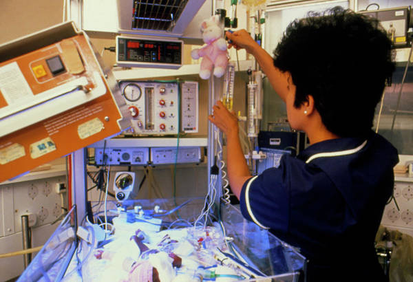Unit Photograph - Nurse At Work In The Neonatal Unit by Penny Tweedie/science Photo Library