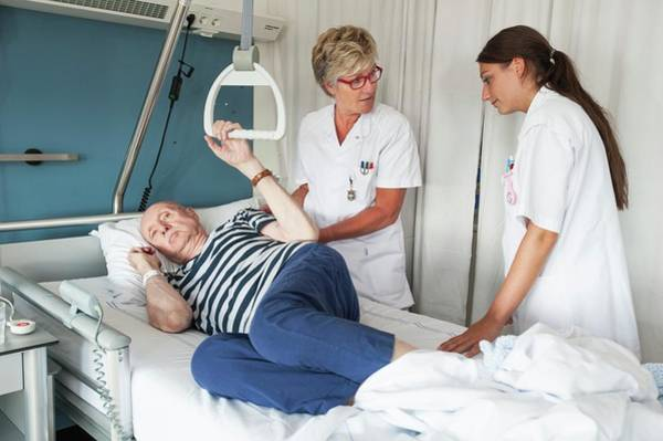 Trapeze Photograph - Nurses Assisting Patient by Arno Massee/science Photo Library