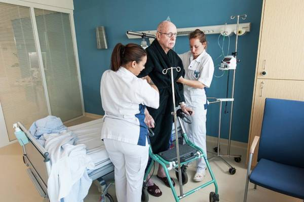 Wall Art - Photograph - Nurses Helping Senior Male Ward by Arno Massee/science Photo Library