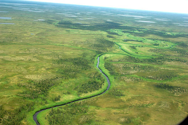 Bristol Photograph - Nushagak River Drainage Basin, Bristol by Nick Hall