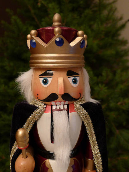 Photograph - Nutcracker King by Richard Reeve