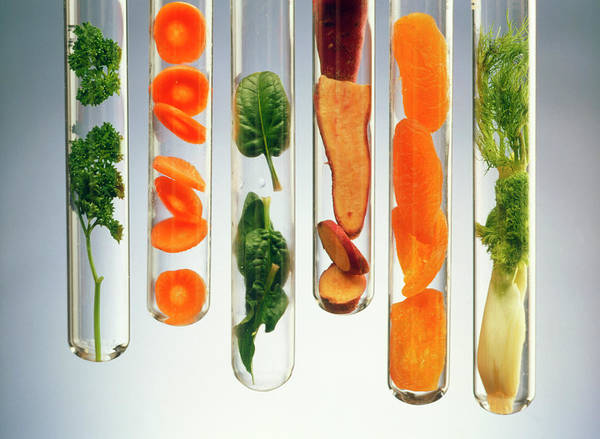 Parsley Photograph - Nutrient-rich Foods Presented In Test Tubes by Oscar Burriel/science Photo Library