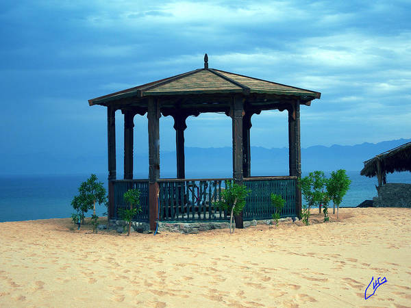 Photograph - Nuweiba Beach Sinai Egypt by Colette V Hera  Guggenheim