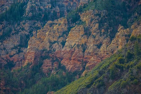 Photograph - Oak Canyon Sedona by Steven Lapkin