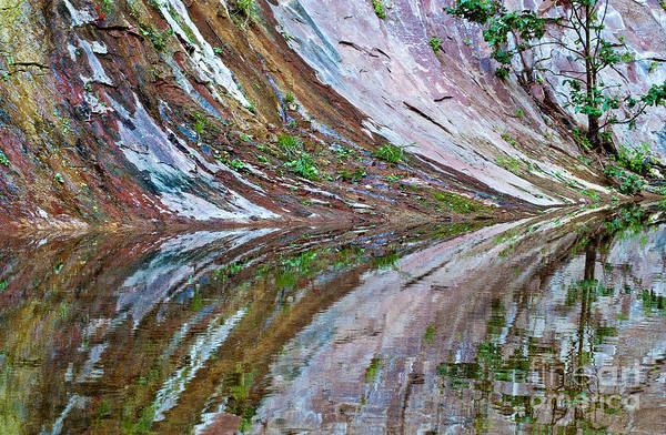 Photograph - Oak Creek Canyon Reflection by Mae Wertz