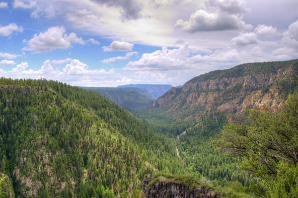 Wall Art - Photograph - Oak Creek Canyon by Ricky Barnard