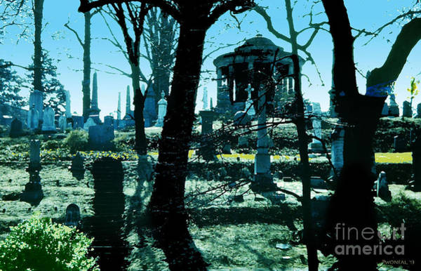 Photograph - Oak Hill Cemetery by Walter Neal