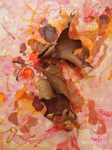 Walnut Mixed Media - Oak Leaf Duet 2 by Nancy Kane Chapman