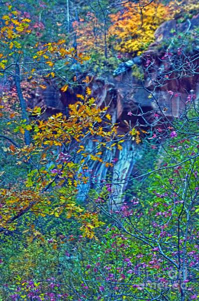 Oak Creek Canyon Painting - Oak Leaves By The Canyon Wall by Brian Lambert