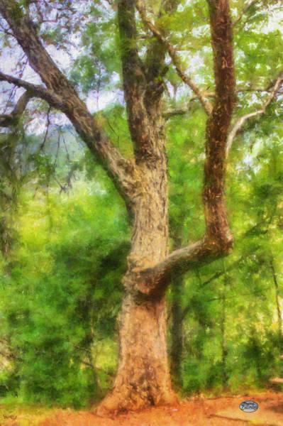 Digital Art - Oak On The Etowah by Daniel Eskridge