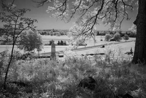 Photograph - Oak Ridge Ir0028 by Guy Whiteley