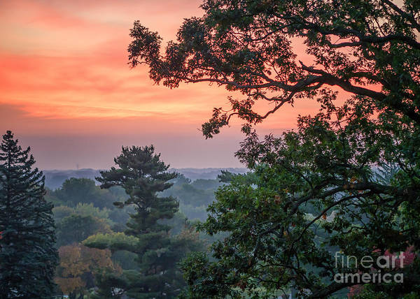 Photograph - Oak Sunrise by Kari Yearous