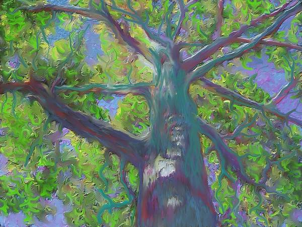 Painting - Oak Tree 1 by Hidden  Mountain