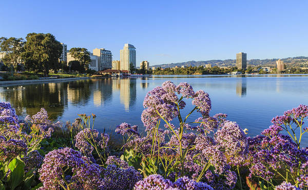 Photograph - Oakland San Francisco by Susan Leonard