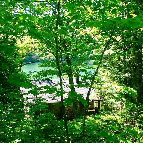 The Canadian Photograph - Oasis In Laurentians - Quebec - Canada by Cristina Stefan