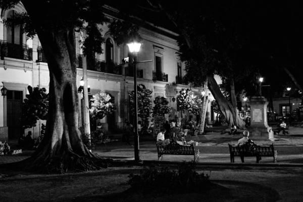 Photograph - Oaxaca Zocalo At Night2 by Lee Santa