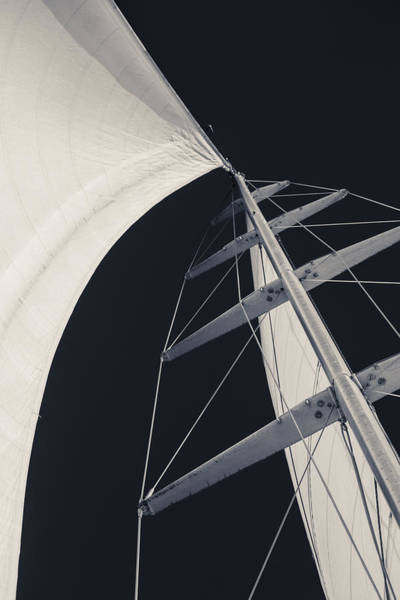 Photograph - Obsession Sails 5 Black And White by Scott Campbell