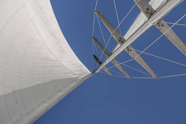 Photograph - Obsession Sails 8 by Scott Campbell