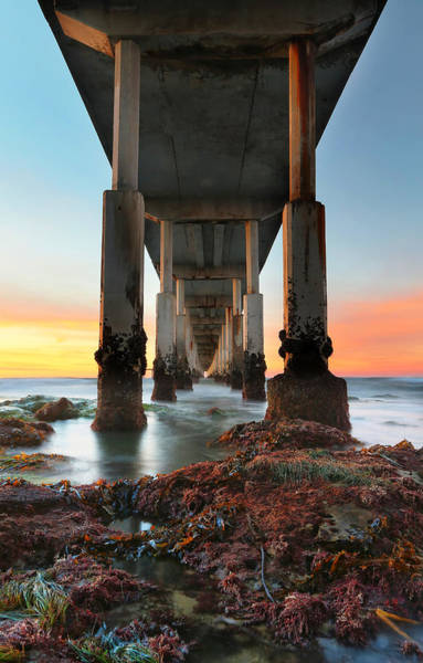 United States Of America Photograph - Ocean Beach California Pier 2 by Larry Marshall