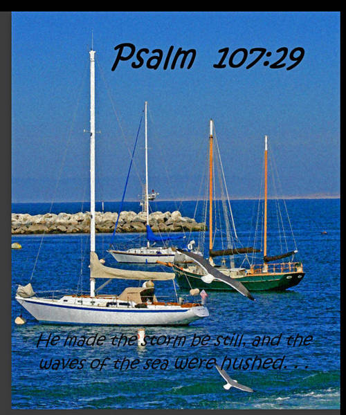 Photograph - Ocean Birds -  Calm Sea - Psalm 107-29 by Joseph Coulombe