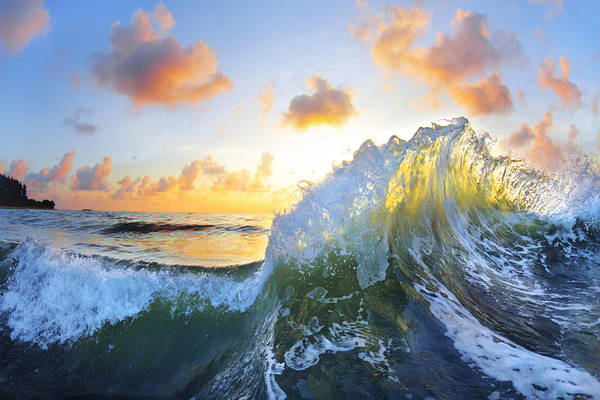 Waves Photograph - Ocean Bouquet by Sean Davey